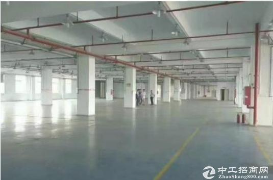 坪山1800平方独栋厂房出租,适合仓库办公研发