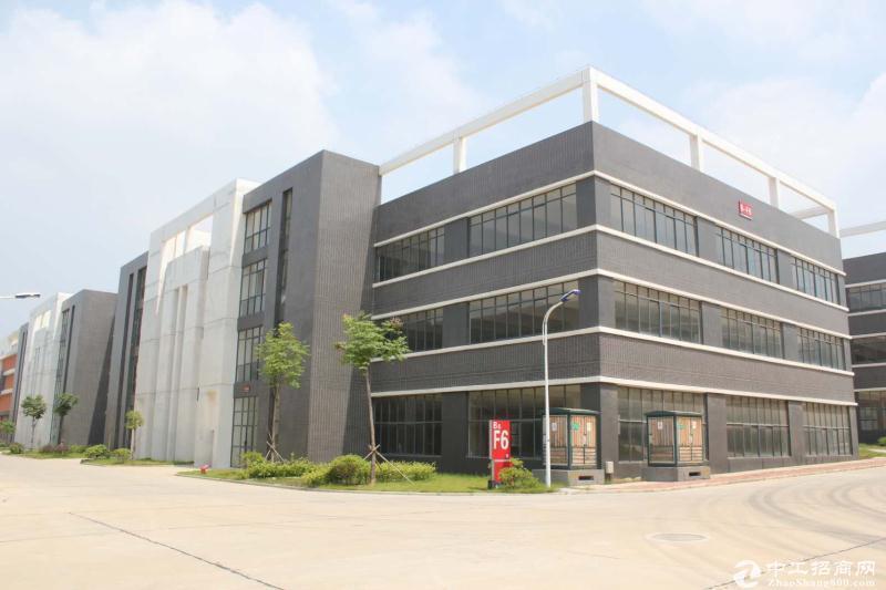 阳逻港独栋多层厂房出售,9000㎡,可分割