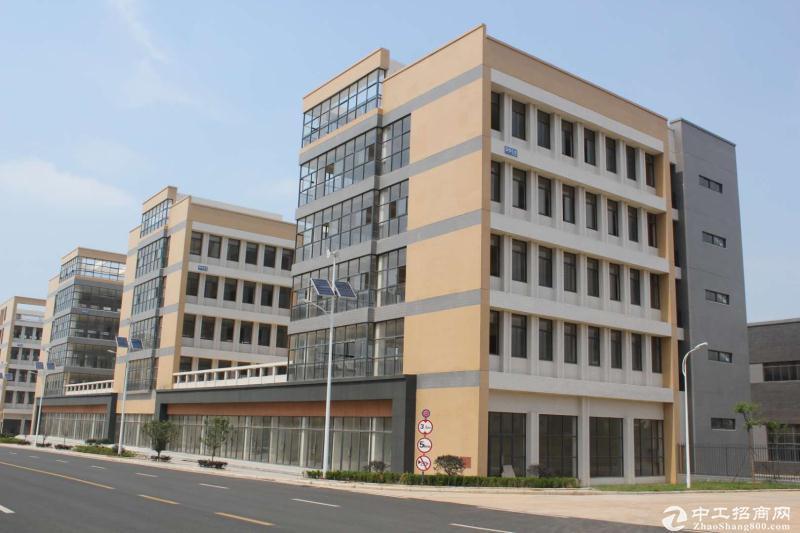 阳逻港独栋多层厂房出售,9000㎡,可分割-图3