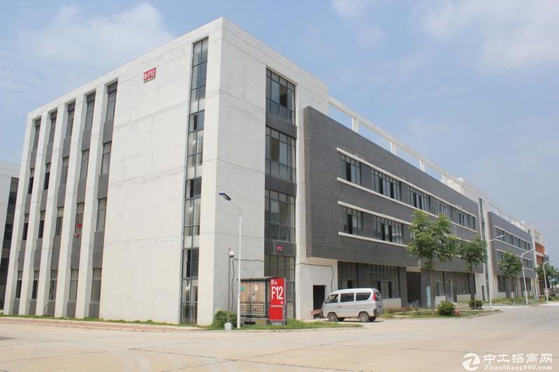 阳逻港独栋多层厂房出售,9000㎡,可分割-图4