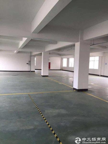花东原房东4800平标准厂房 园林式 手续齐全 可办环评