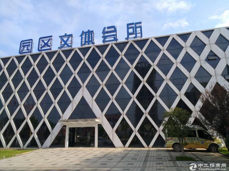 新洲阳逻港 2000平独栋厂房特价出租-图4