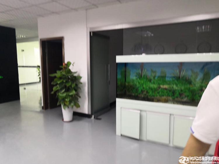 沙井后亭精装修厂房二楼1200平米出租