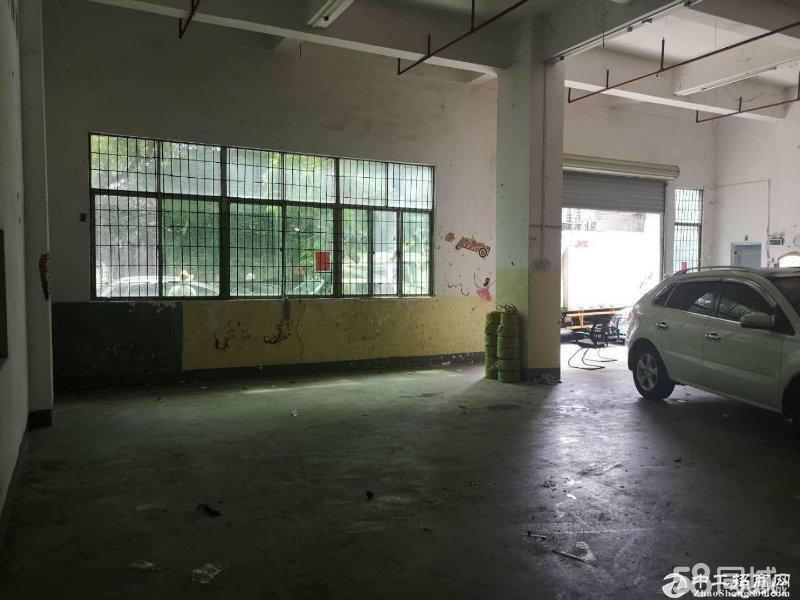 大浪商业中心一楼350平米标准厂房仓库招租