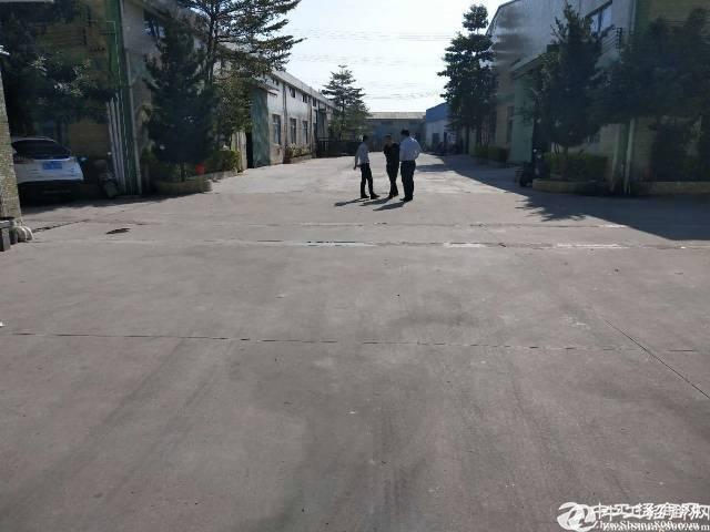 惠阳秋长钢构厂房出租2300平方 原房东无公摊电100