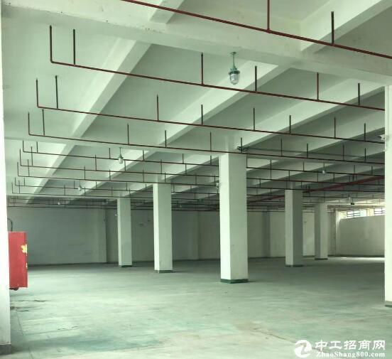 新洲阳逻港工业园低价招租,整栋