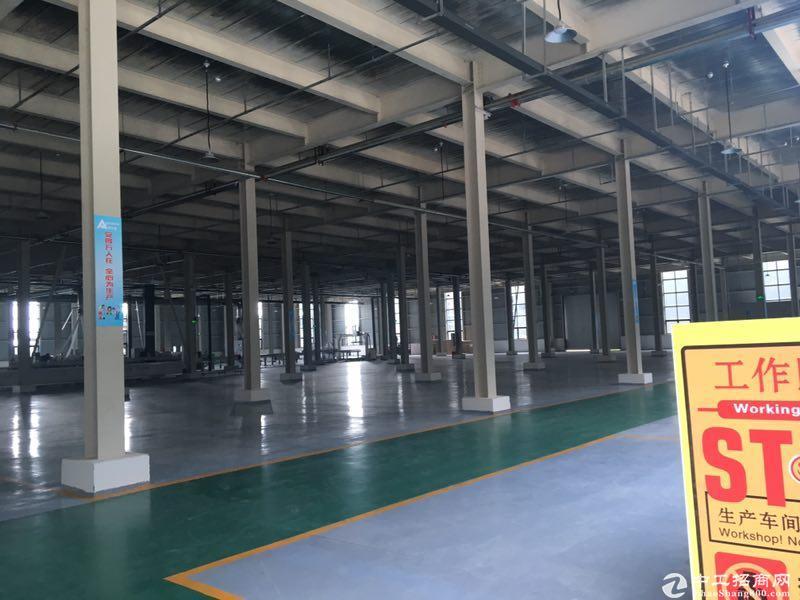 出售雅安名山区标准钢混结构厂房2000㎡家具厂房可以喷漆-图3