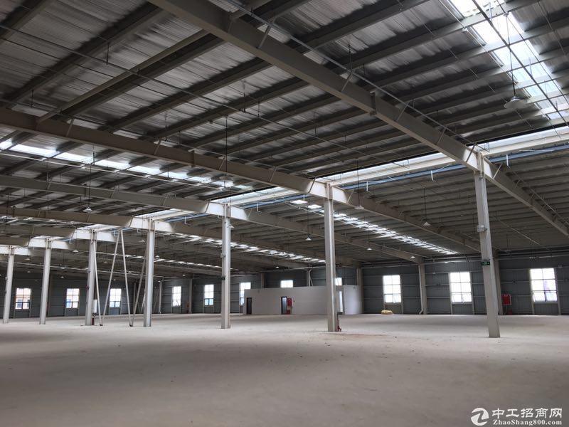 出售雅安名山区标准钢混结构厂房2000㎡家具厂房可以喷漆
