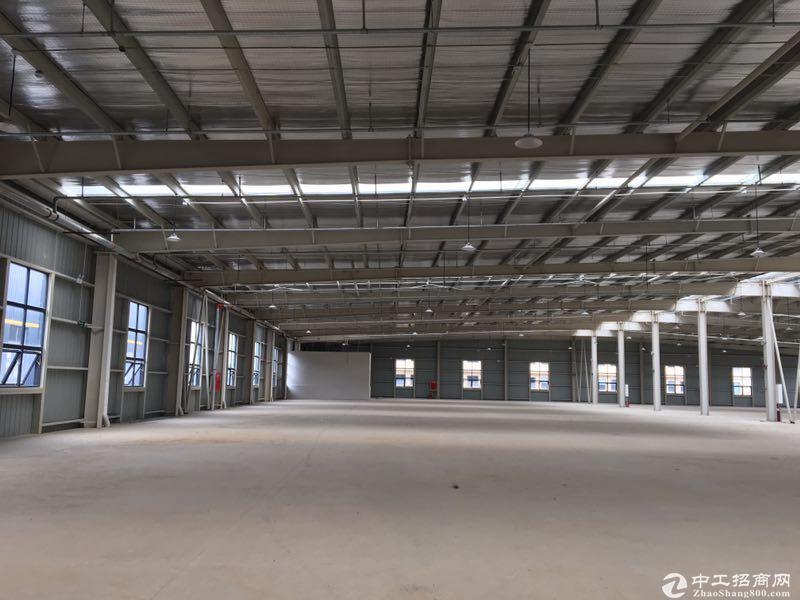 出售雅安名山区标准钢混结构厂房2000㎡家具厂房可以喷漆-图4