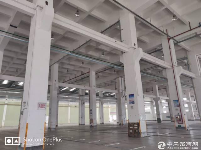 龙华油富商城附近新出1500平厂房仓库出租,200平起租。