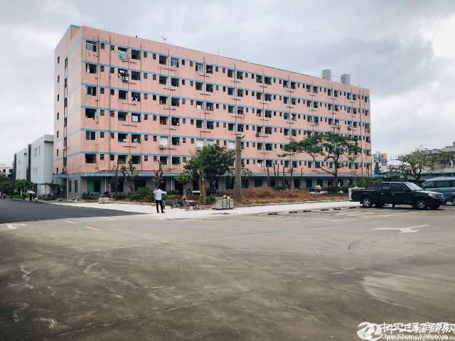 布吉木棉湾地铁站附近标准厂房1500平原房东红本厂房招租