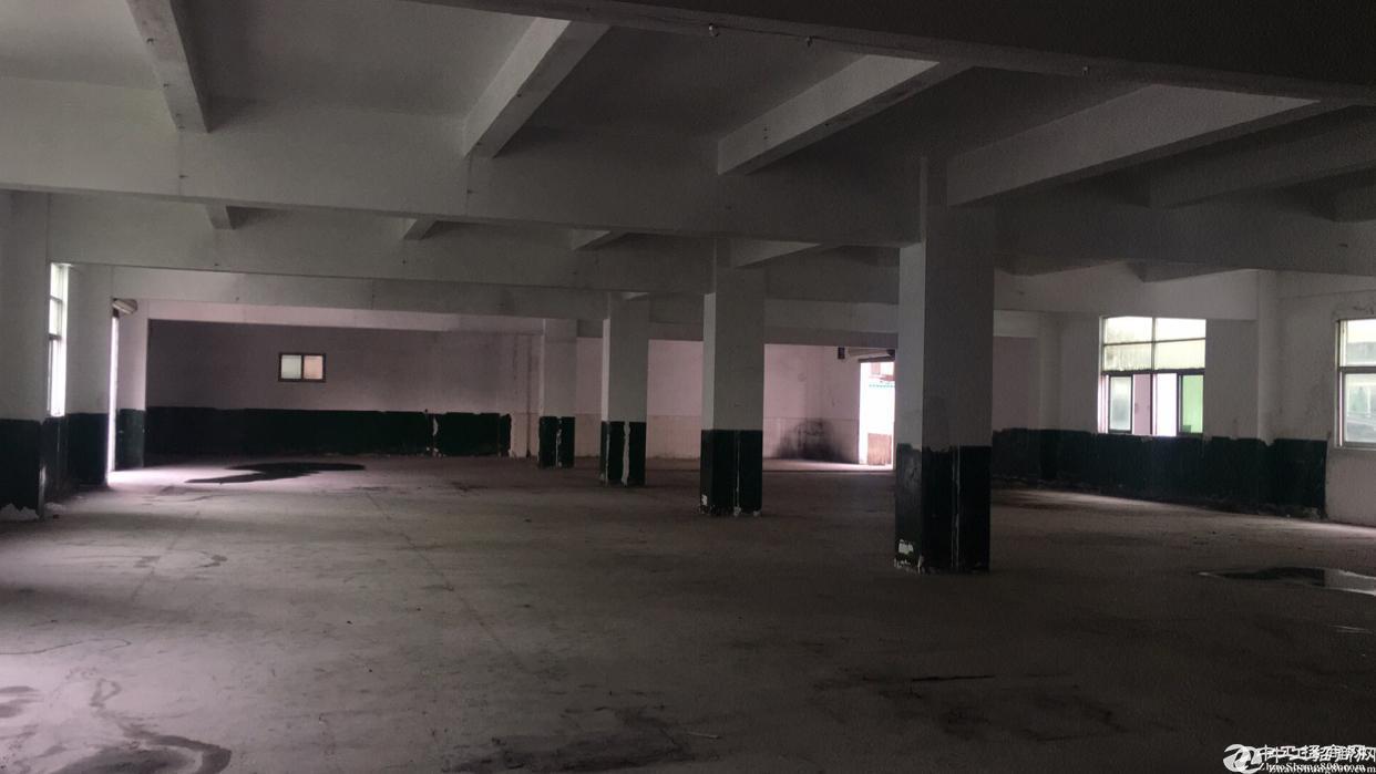 龙华大浪宝龙新出2800平方物流仓库,适合做展厅,停车场等