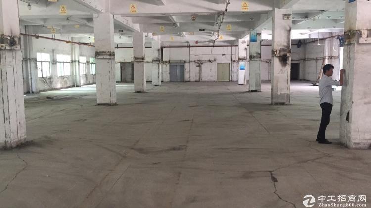 大浪劳动广场旁新出1楼层高6米4100平仓库➕生产,大车随意进出