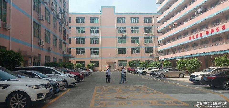 龙华新区龙华天虹附近新出楼上精装厂房1200平,水电到位