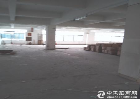 2(出租) 布吉仓库500平米起大小分租空地非常大交通十分便利