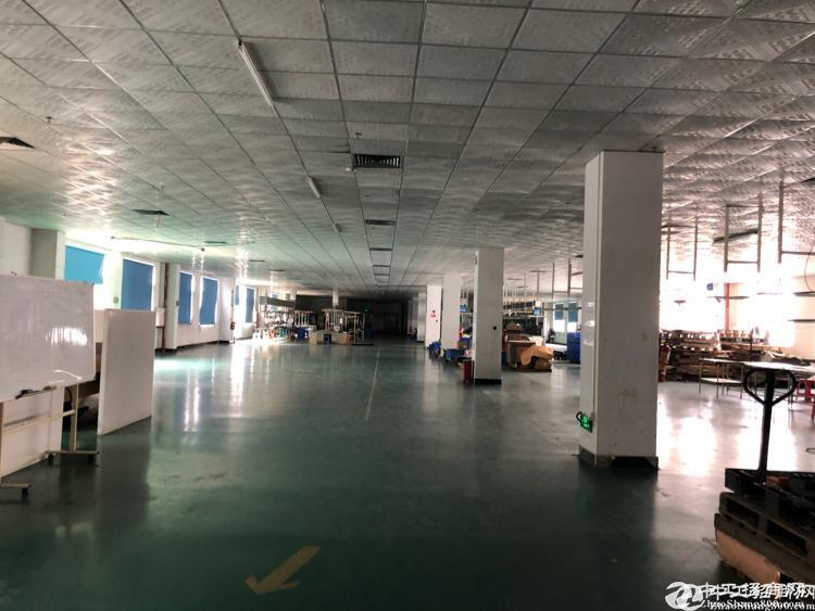 惠阳秋长原房东独栋标准厂房1800平