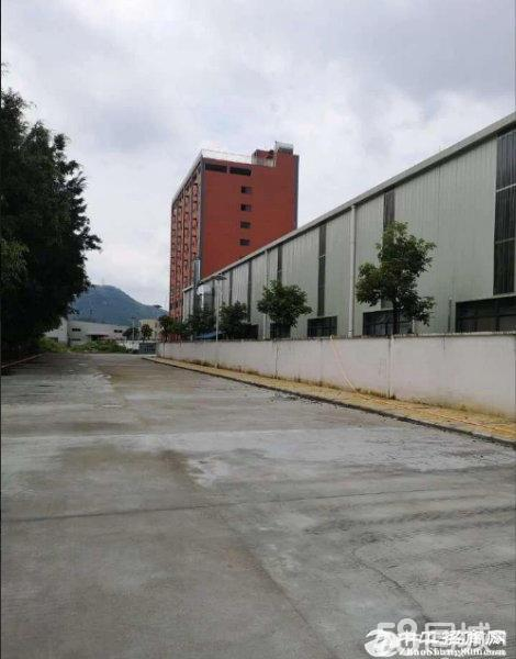 坪山 大工业区新建专业物流仓库,总面积16000平火爆招租。