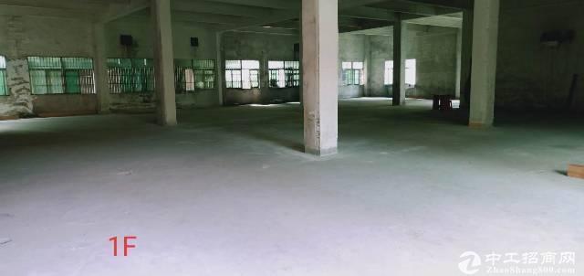 大朗镇独院厂房出租,形象漂亮,厂房规整,现成精装办公室