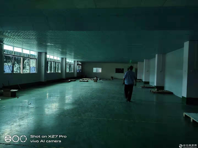 塘厦龙背岭广场附近二楼800平厂房出租适合电商小型加工仓库等