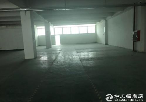 布吉丹竹头标准厂房仓库400平750平出租。