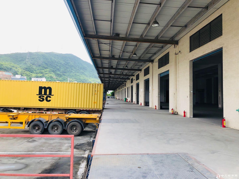 盐田港22500平高标物流仓库.大小可分图片2
