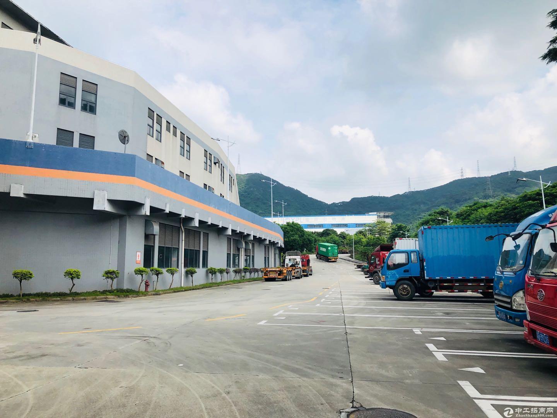 盐田港22500平高标物流仓库.大小可分-图3
