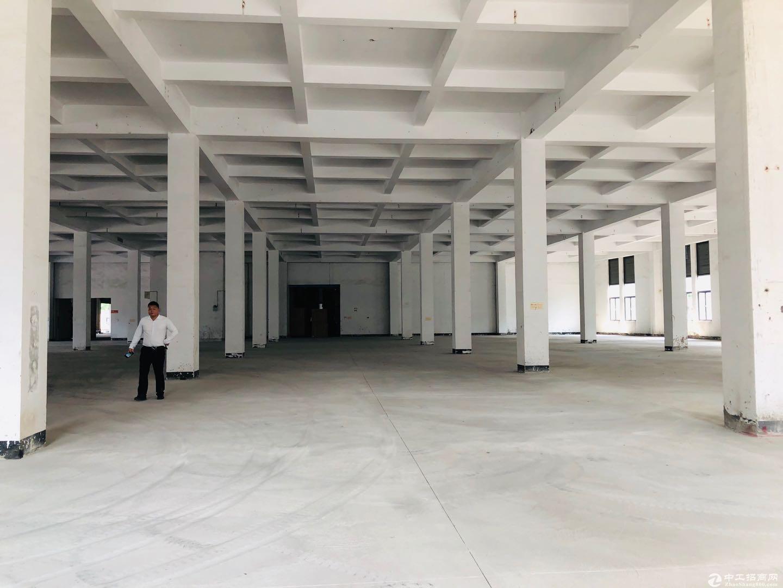 盐田港22500平高标物流仓库.大小可分