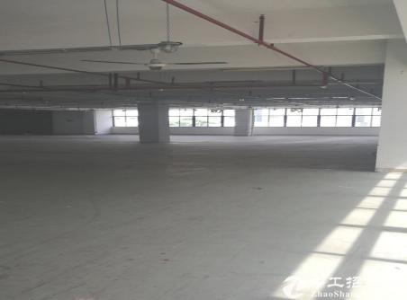 (出租) 布吉丹竹头超.级物流园.5000平带卸货平台.仓库出租