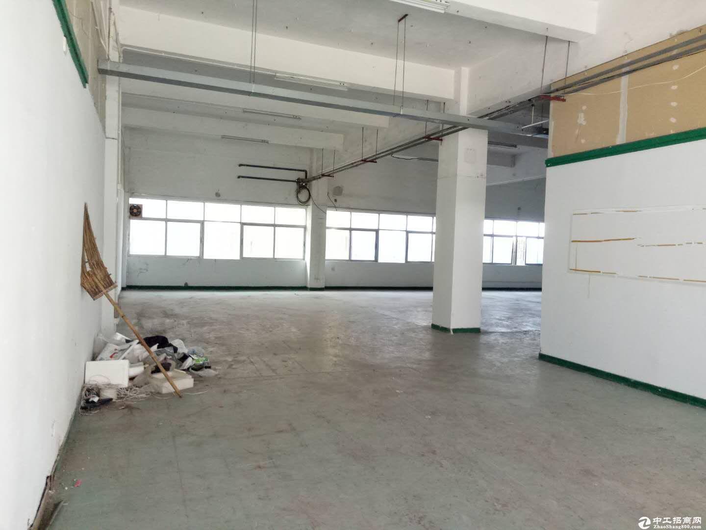 坑梓 老坑 工业区新出一楼标准厂房160平带办公室-图3