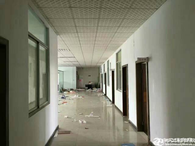 坪山大道边六联新出2楼带装修厂房300平直招-图2