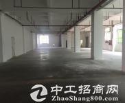 石岩松白路边,原房东出租1楼300平,厂房仓库