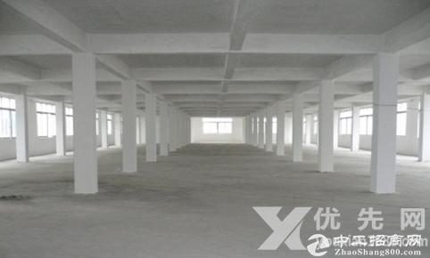 石岩上屋新出楼上900平米带办公室厂房出租