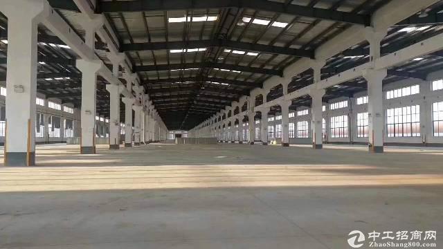 坪山空出26000平米钢构 厂房出租、可分租,高9米,价格20元图片2