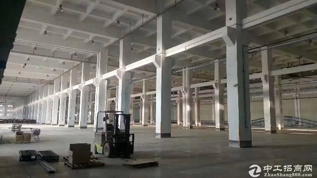 坪山空出26000平米钢构 厂房出租、可分租,高9米,价格20元图片3