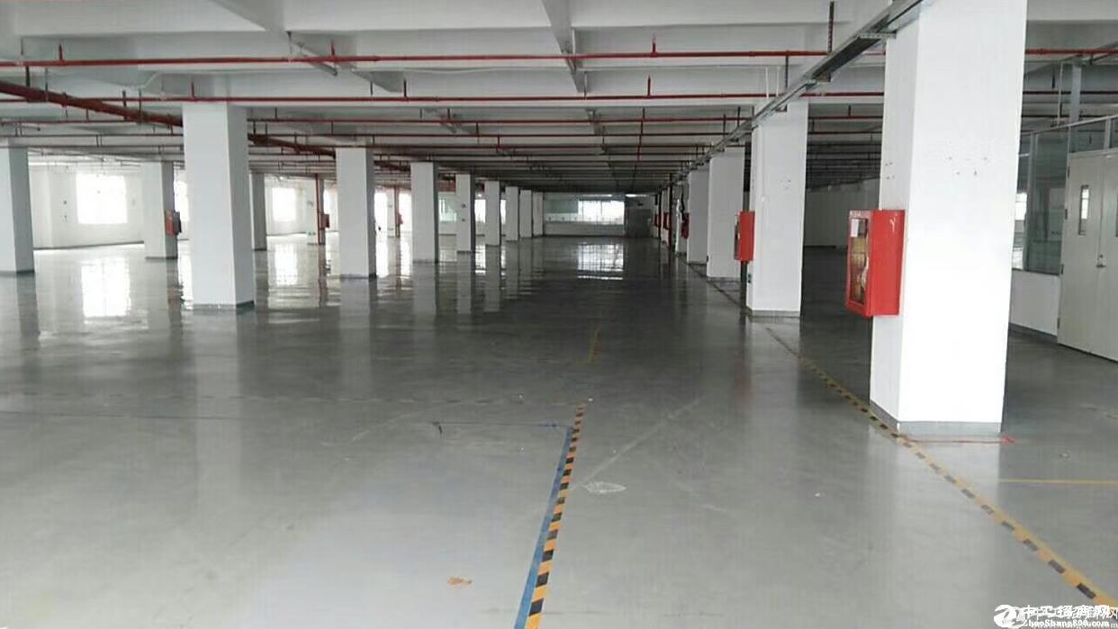 石岩原房东仓库500红本厂房招租,带丙级消防