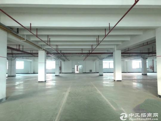 万大工业区一楼40平小仓库出租 可托管货物长短租均可直租