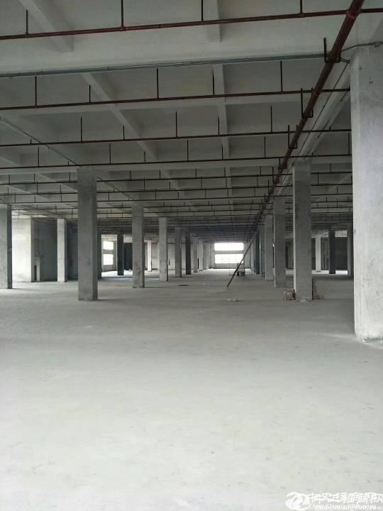 石岩汽车站附近200到3000平一楼厂房,仓库出租