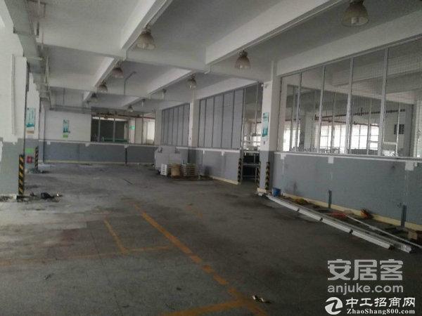 南山西丽伟豪科技园1楼办公室仓库