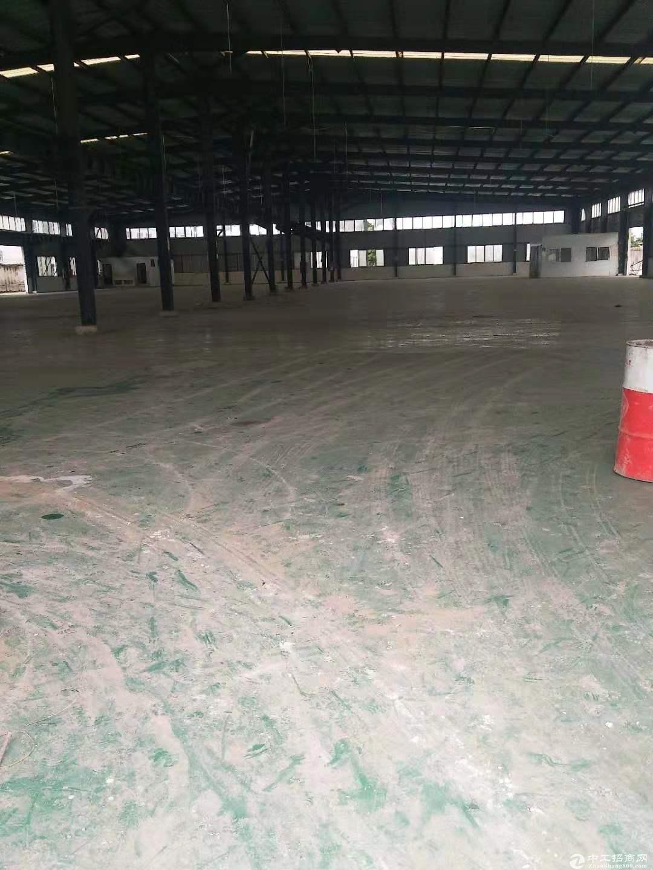 出租龙泉经开区标准钢结构厂房3300㎡普通仓库