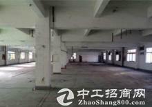 南山科技园深圳湾生态科技园仓库办公低价出租图片2