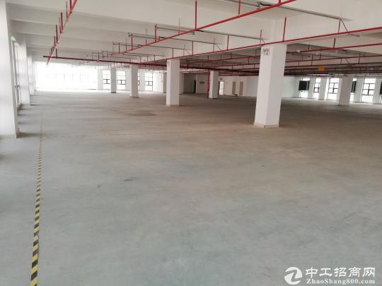 南山区西丽民企科技园仓库办公低价出租