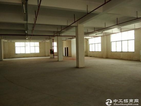 西丽蛇口工业区胜发大厦仓库办公低价出租