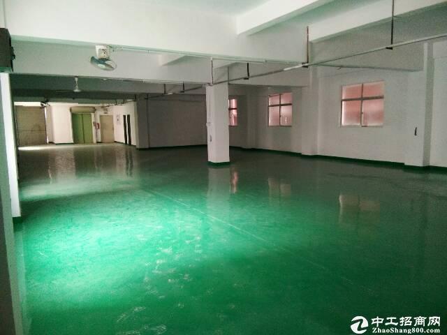 西丽民企科技园仓库办公低价出租