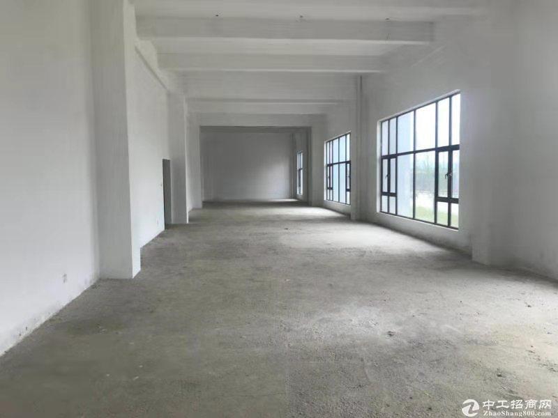 龙泉10000平框架结构厂房出租,可分割价格便宜