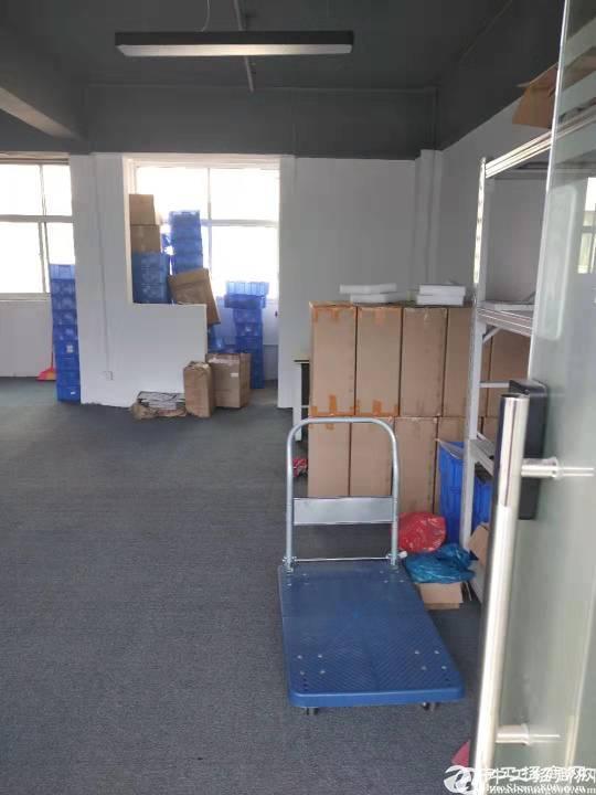 龙华大浪新出办公仓库1200平25元起租,可做办公和轻加工。