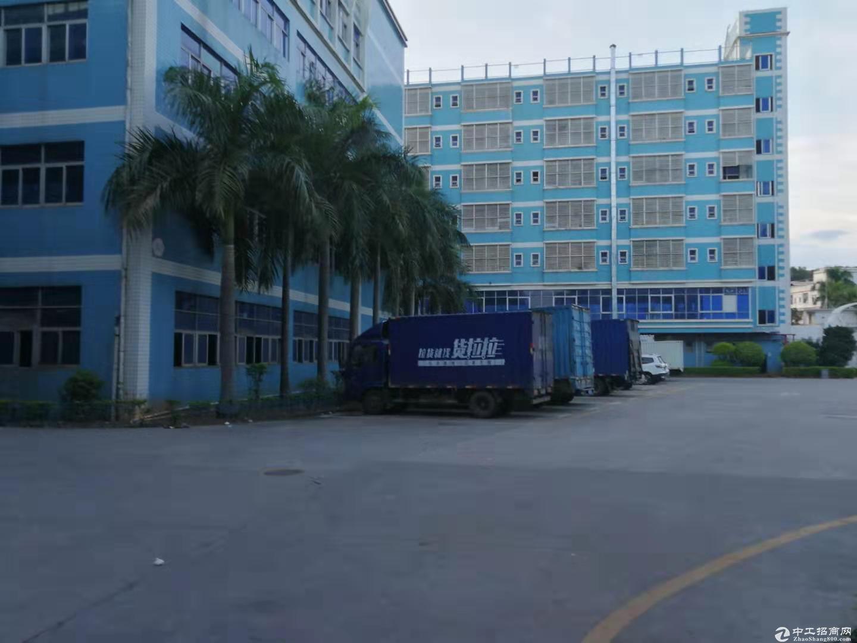 龙岗 同乐大型原房东 红本工业园2050平豪华装修厂房出租