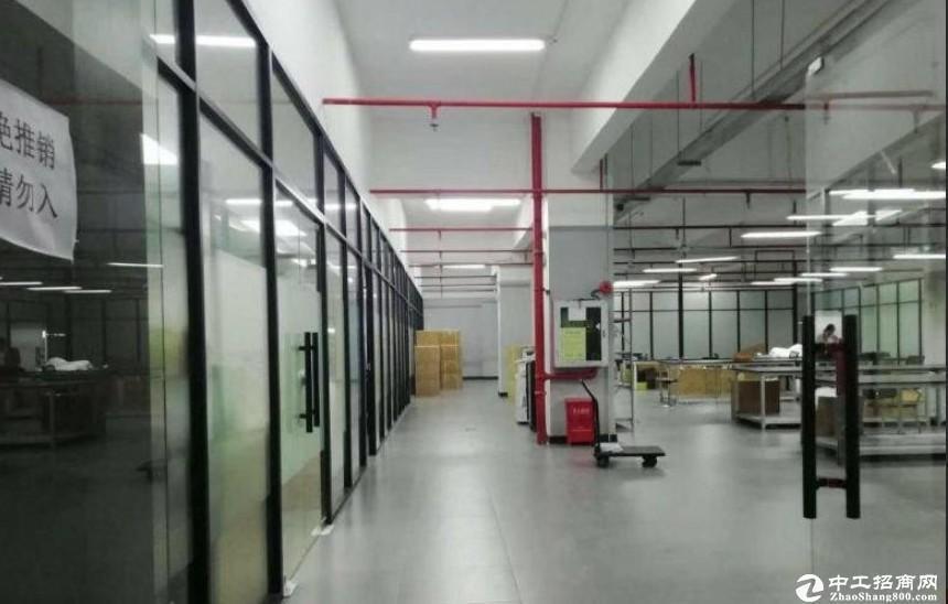 龙华民治新出精装办公室200平至1000平方出租,可做办公研发仓库。