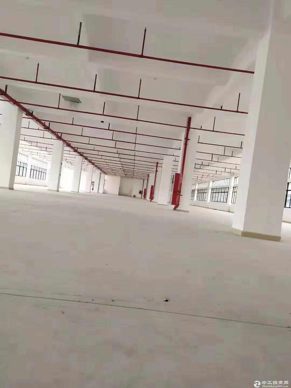 龙岗宝龙新出独门独院5600平米带无尘车间厂房仓库出租可分租