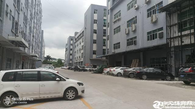 西丽1600平带装修厂房20元招租大小可分租!