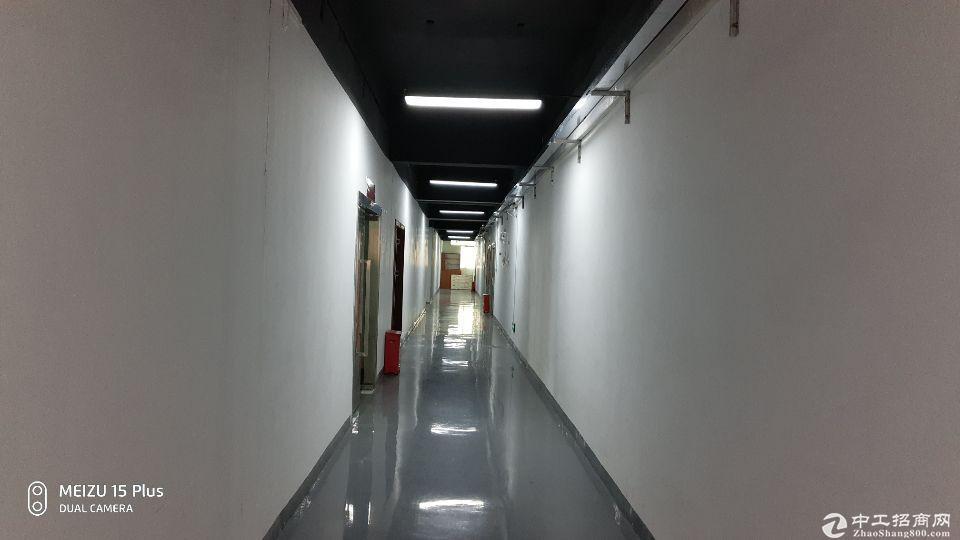 [特价]西丽留仙洞地铁口可做厂房仓库300平米厂房出租